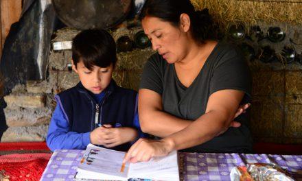 Mapuches, la otra historia