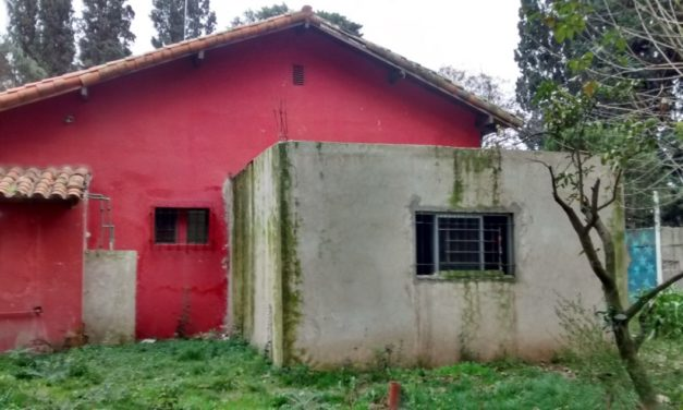 El submundo de las granjas de rehabilitación