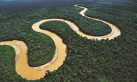 Con la Amazonia en la mira