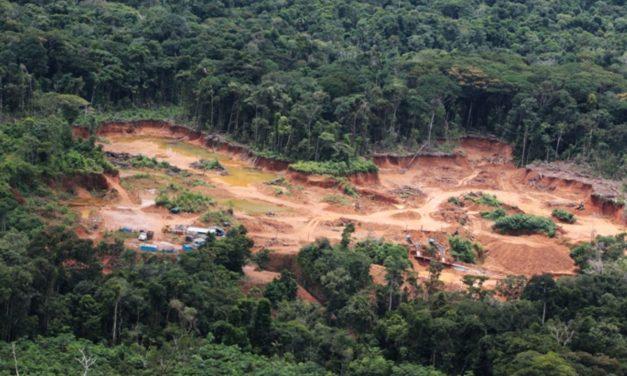 La Amazonia está herida de muerte