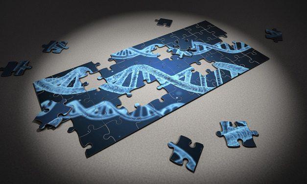 Genética forense con más pruebas
