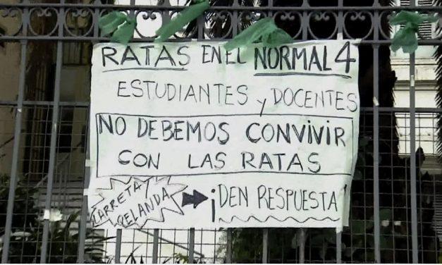 Las ratas de Larreta