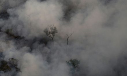 ¡Qué horror lo de la Amazonia! O sea, ¿viste?