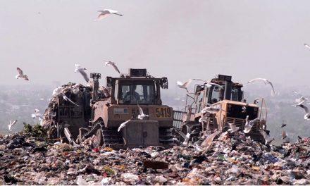 Basura sobre basura