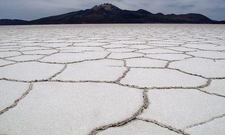 Crónica de una piedra de sal en la herida